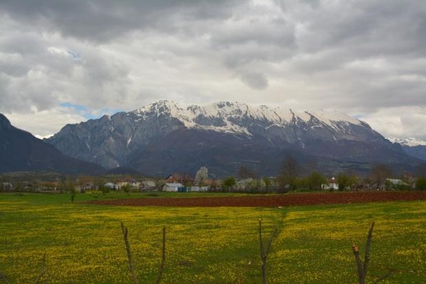 Springtime mountain